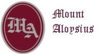 Inside Mount Aloysius   December 2020